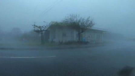 Tifone Maysak piega il sud Giappone, le immagini impressionanti