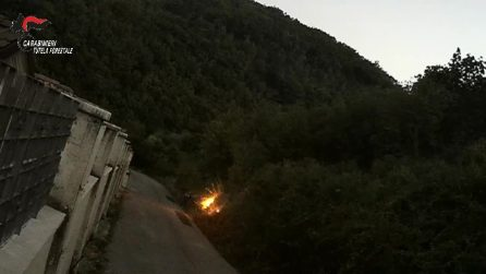 Appicca un incendio in un bosco con un accendino: ripreso dalle telecamere