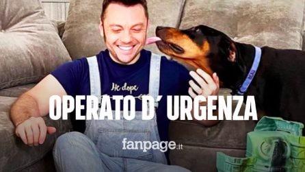 """Tiziano Ferro, operato d'urgenza il cane Beau: """"Ricoverato a seguito di un'emorragia interna"""""""