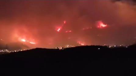 Incendi nel Palermitano, inferno ad Altofonte: rogo drammatico, evacuata la città
