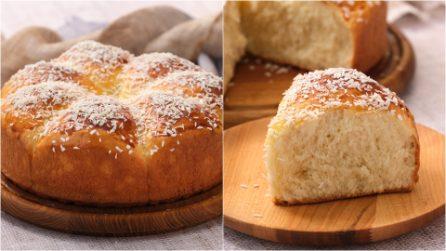 Pane soffice al cocco: la brioche morbida e profumata per deliziare tutta la famiglia!