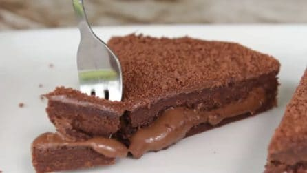 Una golosa torta al cioccolato con 3 ingredienti e senza cottura