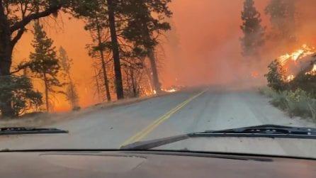 Con l'auto dentro il fuoco: spaventoso scenario in California