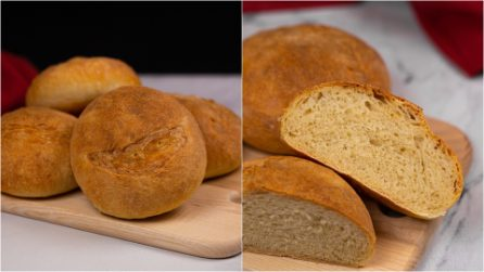 Fluffy buns: how to make at home with just 4 ingredients!