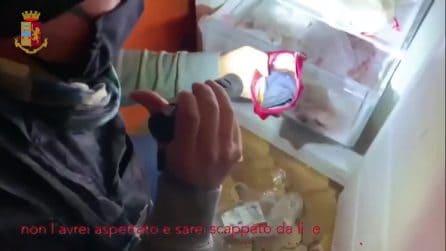 Furti in casa con la tecnica del foglietto trasparente: sette ladri arrestati a Milano