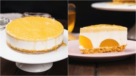 Honey cheesecake: the result will leave you speechless!