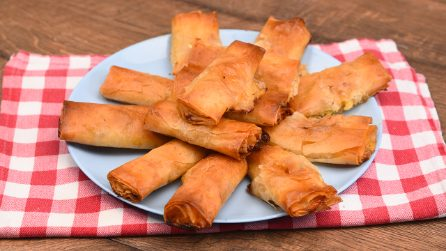 Easy phyllo rolls: everyone will love this delicious appetizer!