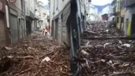 Maltempo, esonda il Tanaro: strade invase da rami e tronchi