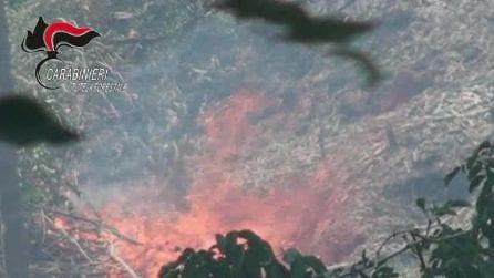 Caserta, dà fuoco a 20mila metri quadri in un'area protetta: arrestato