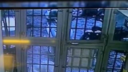 """Napoli, pizzeria Sorbillo, il """"ladro fotografo"""" nel video dalle telecamere di sicurezza"""
