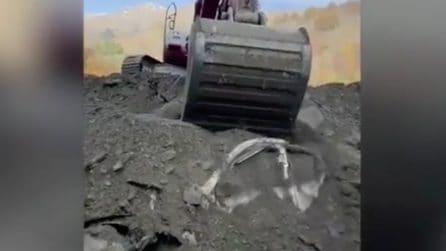 Le auto sepolte da metri di fango vengono tirate fuori dopo l'allucione