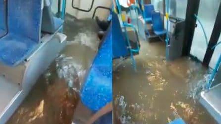 Autobus come fiumi: completamente invasi dall'acqua
