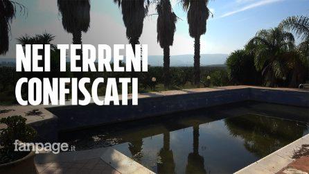 Catania, casolare con piscina e agrumeto confiscato alla mafia torna ai cittadini dopo 8 anni