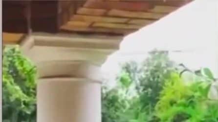 L'ultimo video di Diego Armando Maradona in vita