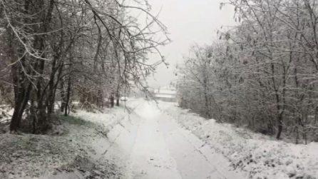 Neve nel Milanese, la magia del paesaggio imbiancato