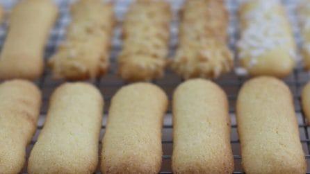 Savoiardi fatti in casa: la ricetta dei biscotti leggeri e golosi