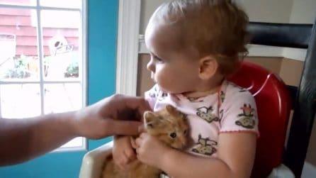 Cercano di accarezzare il suo gattino: lo sguardo e la reazione della bimba sono imperdibili
