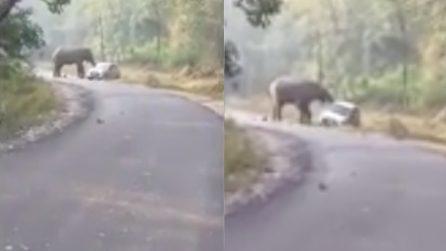 Sono diretti a lavoro quando un elefante si avvicina alla loro auto e cerca di ribaltarla