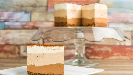 Chocolate Layered Mousse Cake