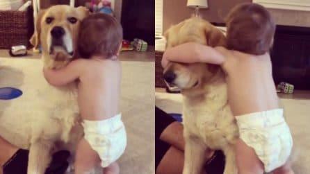 Non riesce a staccarsi dal suo cane: l'affetto del bimbo è meraviglioso