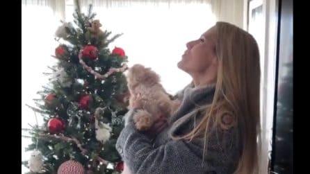 Michelle Hunziker torna a casa ed ecco come reagisce il suo cane Leone