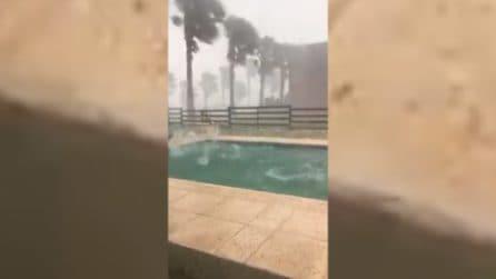 Sembrano sassi enormi: gli effetti della grandinata impressionante nella piscina