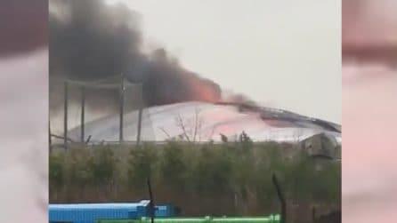 Scoppia un enorme incendio nel recinto dei coccodrilli: le immagini spaventose