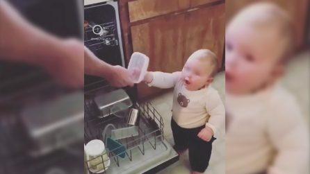 Vuole rendersi utile a tutti i costi: l'aiuto in cucina più dolce di sempre