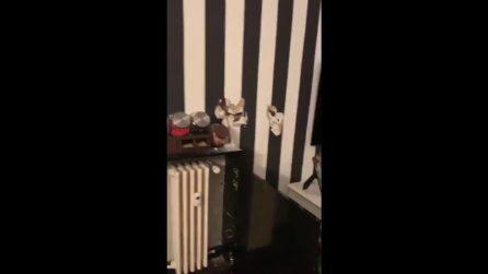 Fabrizio Corona derubato, in un video mostra la casa devastata dai ladri
