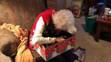 Una sorpresa di Natale per la dolce nonna: la sua gioia commuove