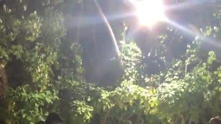 Il video del bacio tra Ghali e Mariacarla Boscono