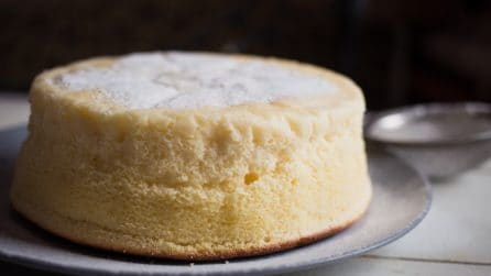 Condensed milk cheesecake: the most tender cake ever
