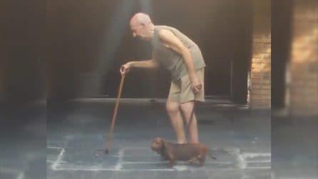 L'anziano padrone non cammina bene: il gesto del cane è straordinario
