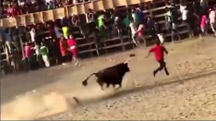 Sfida il toro, poi inizia a scappare: l'animale lo raggiunge e finisce in tragedia