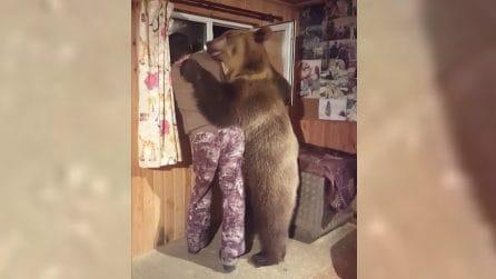 L'orso entra in stanza e abbraccia l'uomo alla finestra: da non credere