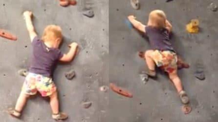 Due anni ed è già una bravissima scalatrice: ecco come si arrampica