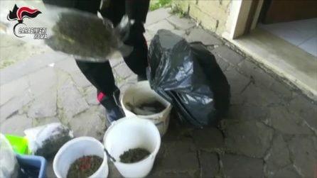 Covo di rapinatori scoperto a Bracciano: nascondevano armi, droga ed esplosivi