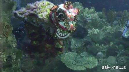 Un leone danza sott'acqua per il nuovo anno lunare in Malaysia