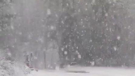 La forte nevicata imbianca tutto: fiocchi enormi cadono dal cielo