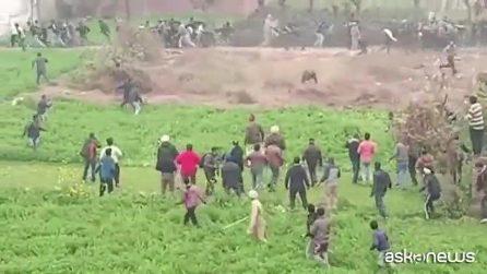 India, leopardo semina il panico tra la folla e attacca: 4 feriti