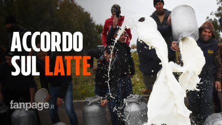 Protesta latte, i pastori sardi trovano l'accordo: prezzo subito a 80 cent,1 euro a fine stagione