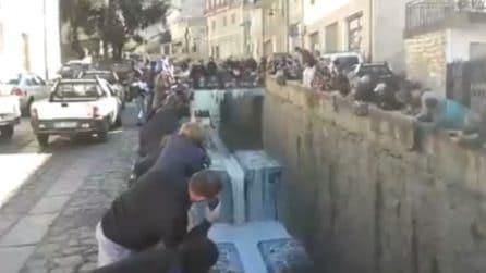 """""""Trasformano"""" l'acqua del fiume in latte: la protesta dei pastori"""
