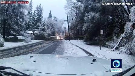 Gli alberi cadono sulla strada: intrecciandosi con i fili elettrici danno vita a un incendio