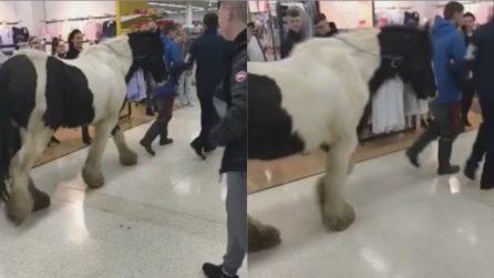 Li scortano fuori dal supermercato: la scena esilarante