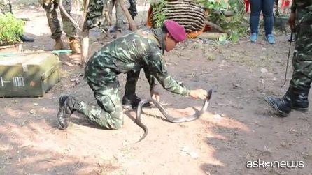 Bere sangue di cobra e mangiare scorpioni, le assurde prove per i marines