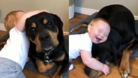 """Un'amicizia autentica e fedele: il bimbo e il suo """"cagnolone"""" sono meravigliosi"""