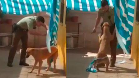 Poliziotto libera il cane dal tendone, il cane lo ringrazia: immagini toccanti