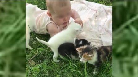 Il bimbo è circondato da cuccioli: mamma filma la scena più tenera che ci sia