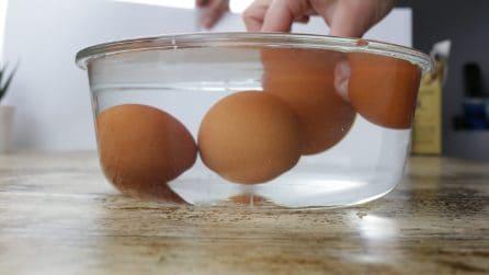 Test uova: ecco come capire se sono fresche oppure no!