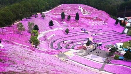 Immergetevi in un paesaggio da sogno: la meraviglia del Giappone